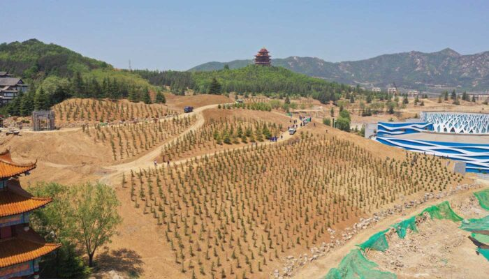 Afforestation of Huaxia Scenic Area